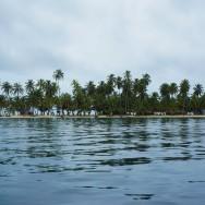 Iguana - San Blas